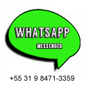 Whatsapp flower shop Belo Horizonte